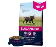 Eukanuba Puppy Chicken Large Breed - за малки кучета от големи и гигантски породи + 3 кг. ГРАТИС!